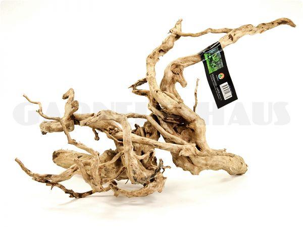 Spiderwood L, around 50-70 cm