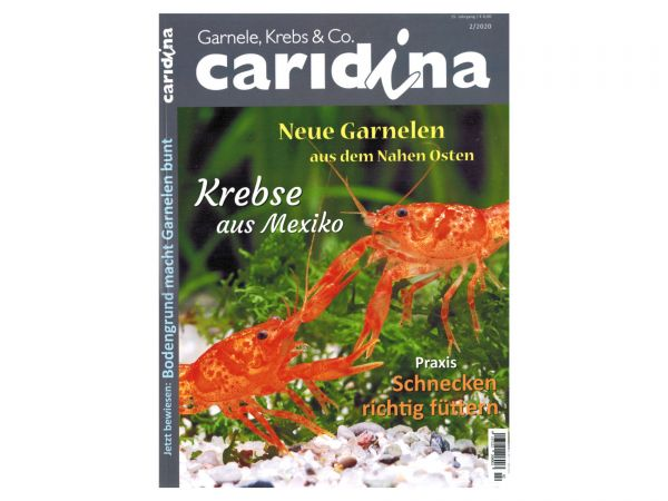 caridina - Garnelen, Krebse & Co :: Invertebrates Magazin, Dähne, Issue 2/2020