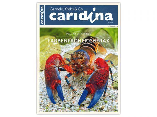 caridina - Shrimp, Crayfish & Co :: Invertebrates Magazine, Dähne Publisher, issue 2/2019