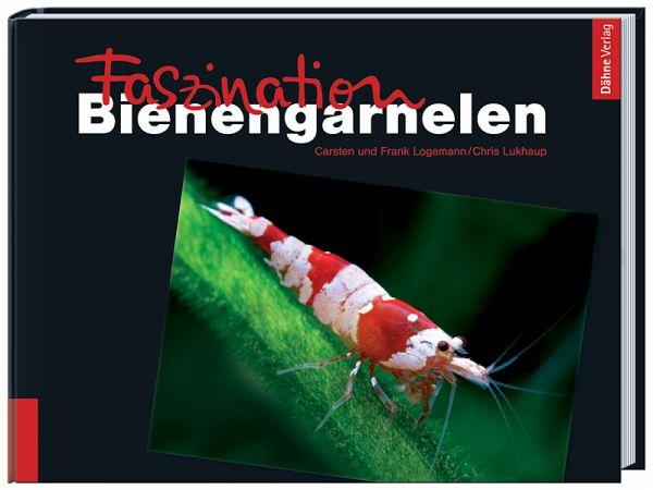Fascinating Bee Shrimp (in German)