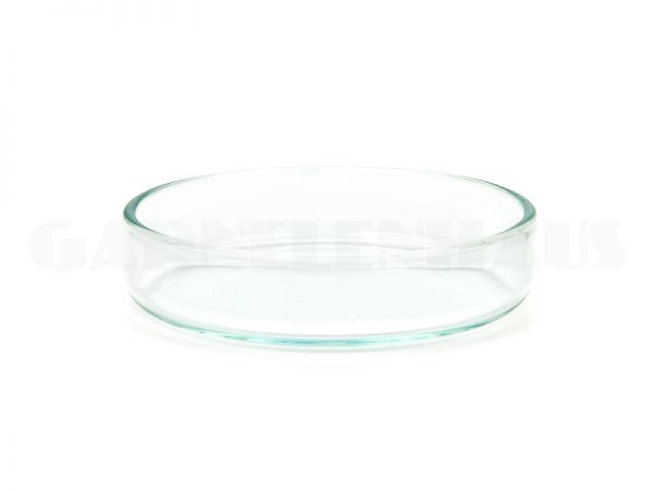 Glass food bowl, 53/15 mm