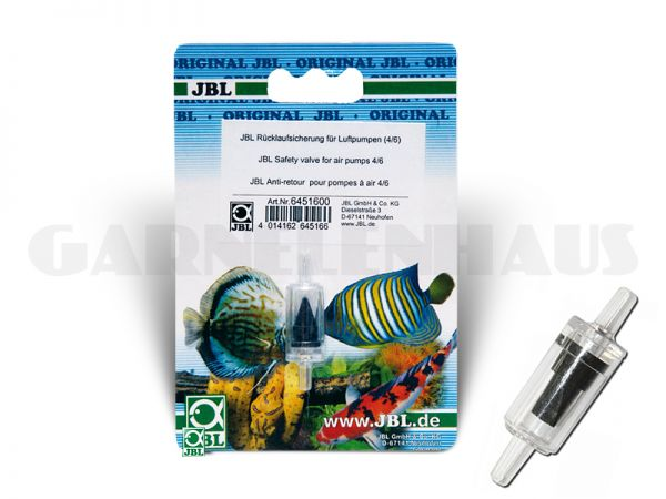 Check valve for air pumps