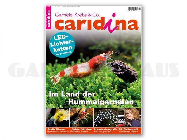 caridina, issue 1/2011 (in German)