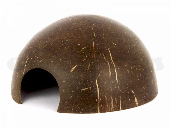 Coconut Crayfish House, smooth surface