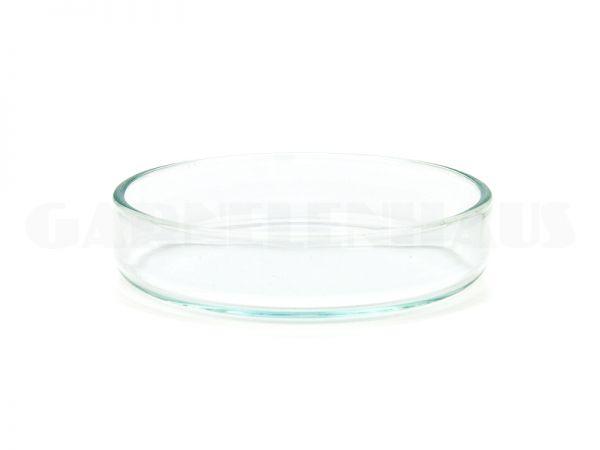 Glass food bowl, 55/13 mm