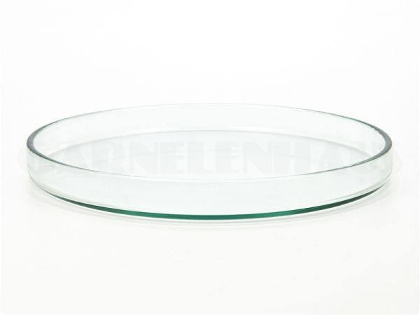 Glass food bowl, 100/11 mm