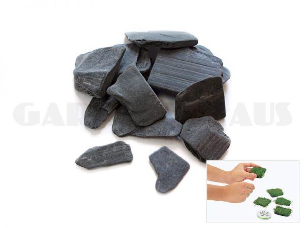 Riccia Stones, 10 pcs.